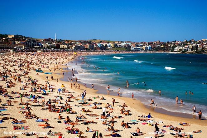 Bondi Beach crowded with sunbathers on a warm spring weekend Sydney New South Wales Australia