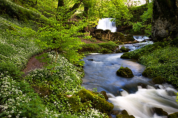 Janets Foss and Gordale Beck in Spring, Malhamdale, Yorkshire Dales, England