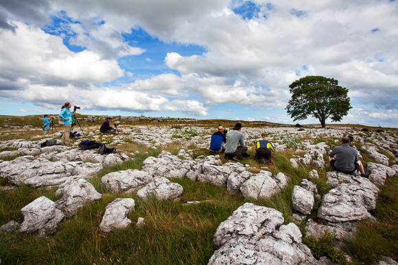 Photographing at the Lone Tree on the August Malham workshop