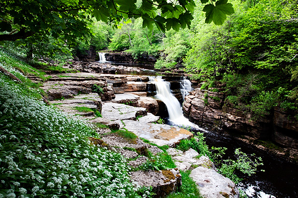 Shot of Kisdon Force near Keld also used in the book