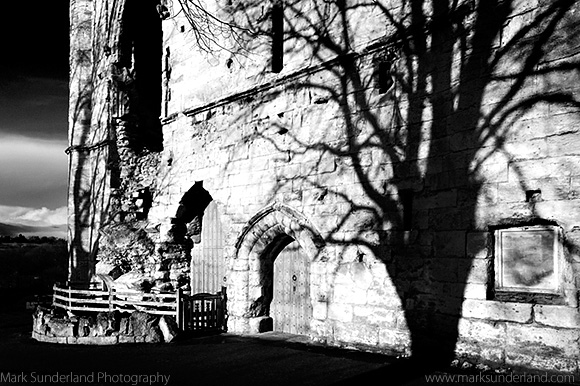 Winter Tree Shadow on a Castle Ruin