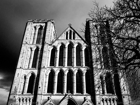 West Front of Ripon Cathedral and Winter Tree