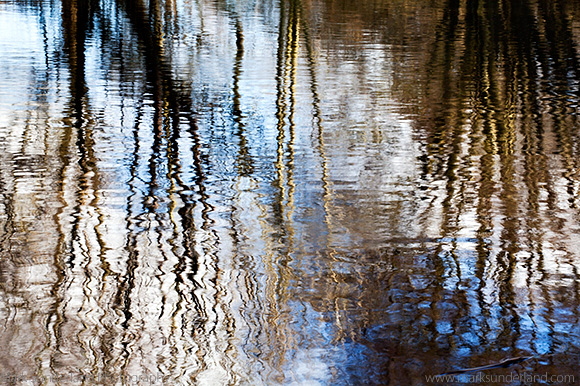 Riverside Tree Reflections and Ripples