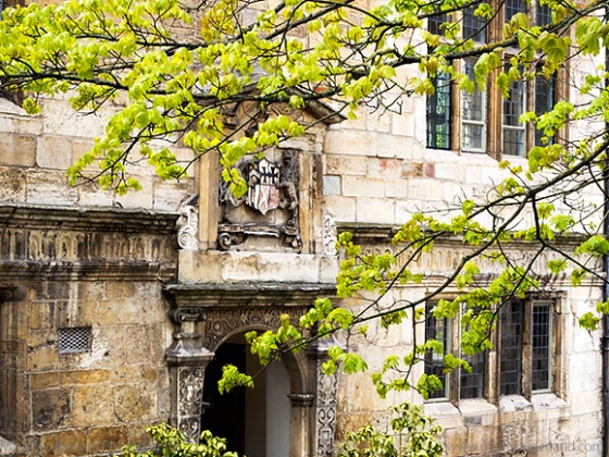 Spring Foliage and Doorway with Coat of Arms in the Courtyard at The Kings Manor, University of York, Exhibition Square, York