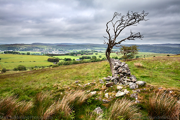 Lone Tree and Old Stone Wall in the Northumberland National Park Overlooking Rothbury Northumberland England