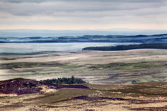 Caudhole Moss from The Beacon in the Simonside Hills near Rothbury Northumberland England