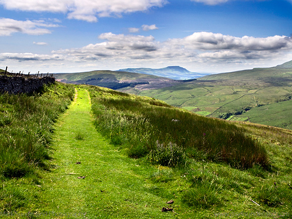 The Penine Bridleway below Great Knoutberry Hill with Ingleborough in the Distance Dentdale Yorkshire Dales Cumbria England