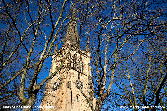 Wakefield Cathedral through Winter Trees