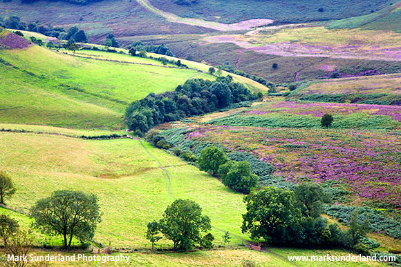 Hole of Horcum in summer North York Moors Yorkshire England