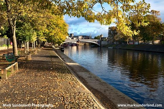 Autumn Trees by the River Ouse near Lendal Bridge York Yorkshire England