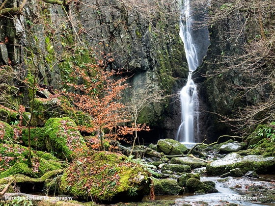 Catrigg Force in a Limestone Gorge near Stainforth in Ribblesdale Yorkshire Dales England