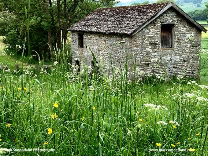 Field Barn near West Burton