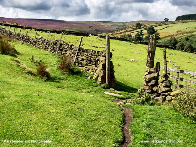 The Bronte Way near Haworth