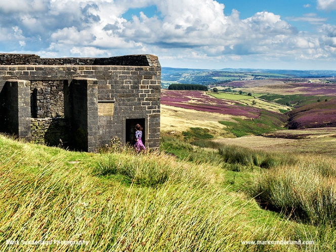 At Top Withins on Haworth Moor in Summer