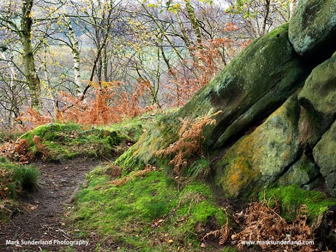 Gritstone Rocks at Birk Crag
