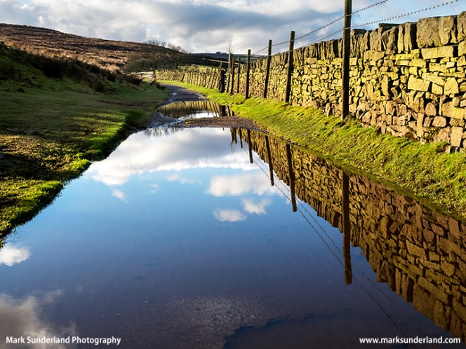 Puddles on the Bronte Way near Haworth