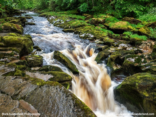 The Strid Bolton Abbey North Yorkshire England