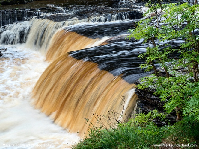 Peaty Water in Lower Aysgarth Falls on the River Ure, Wensleydale