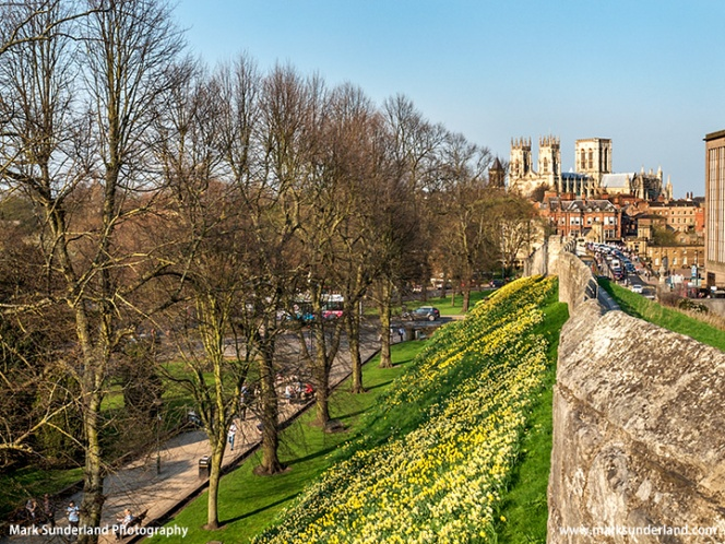 York City Wall and Minster in Spring