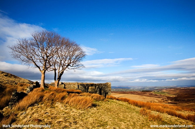 Top Withins on Haworth Moor