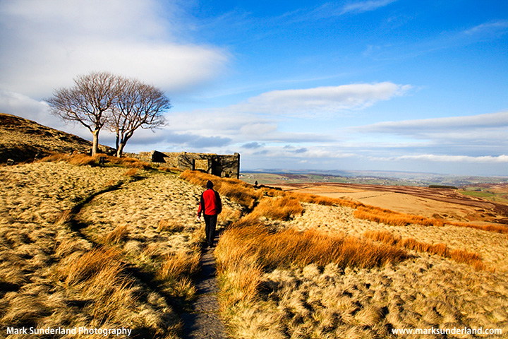 On Haworth Moor at Top Withins