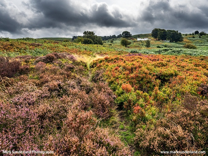White Wells on Ilkley Moor