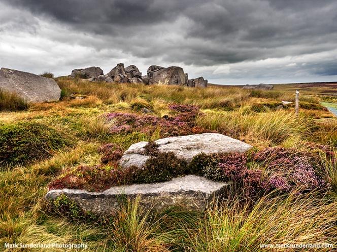 Boulders on Burley Moor