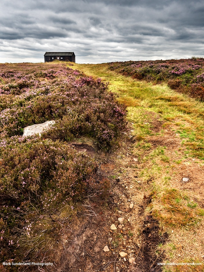Shooting Hut on Burley Moor