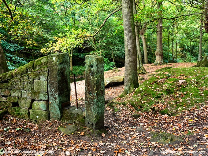 Shipley Glen in Early Autumn