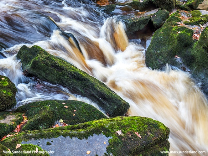 The Strid at Bolton Abbey