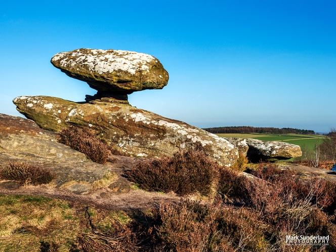 Mushroom Rock on Brimham Moor