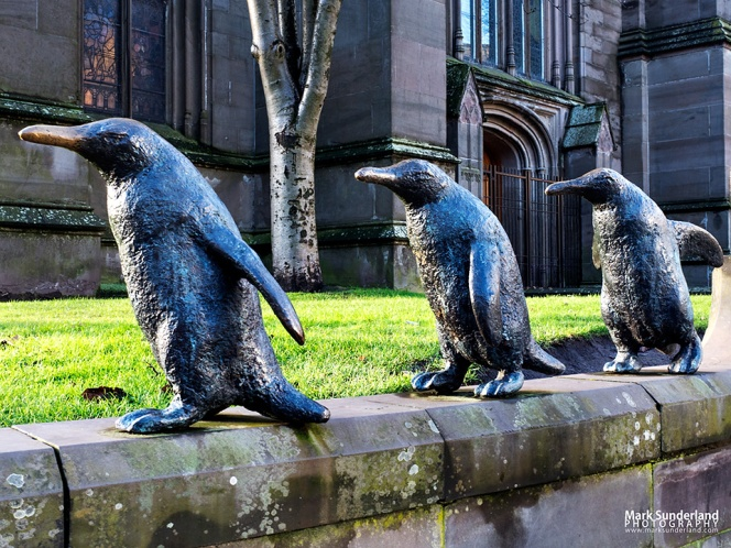 Three of the five penguin sculptures by Angela Hunter on the wall at Dundee Parish Church