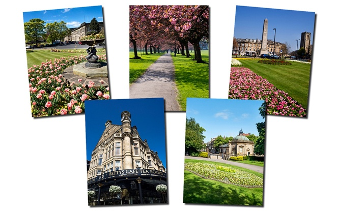 Harrogate Greetings Card Pack